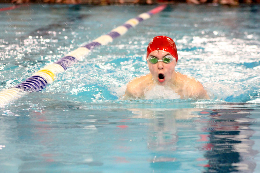 Swim team finishes successful at regional competition
