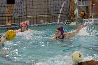 Water polo team continues successful season