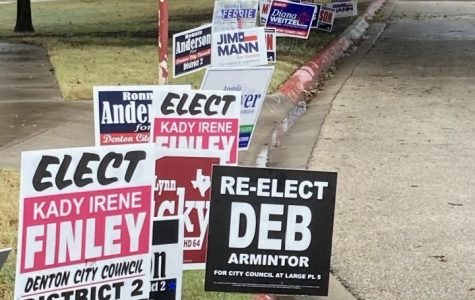 Political signs line the curb of a road.